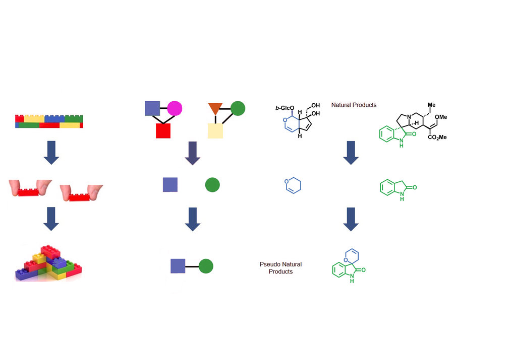 Principle and design of pseudo-natural products - new opportunities for bioactive small-molecule discovery
